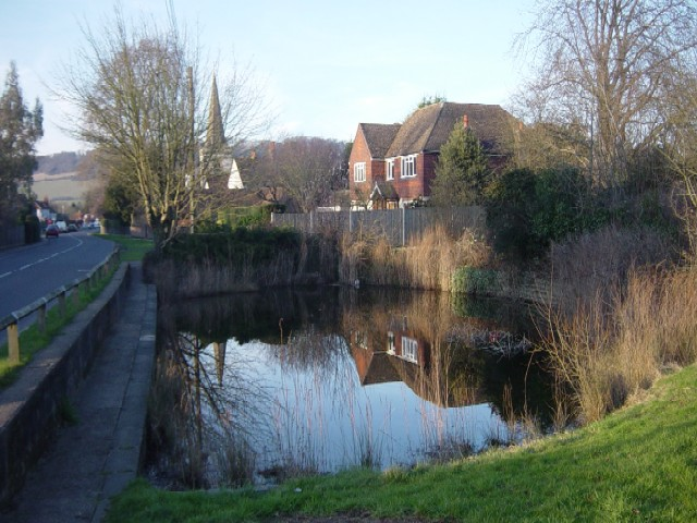 image of brockham pond