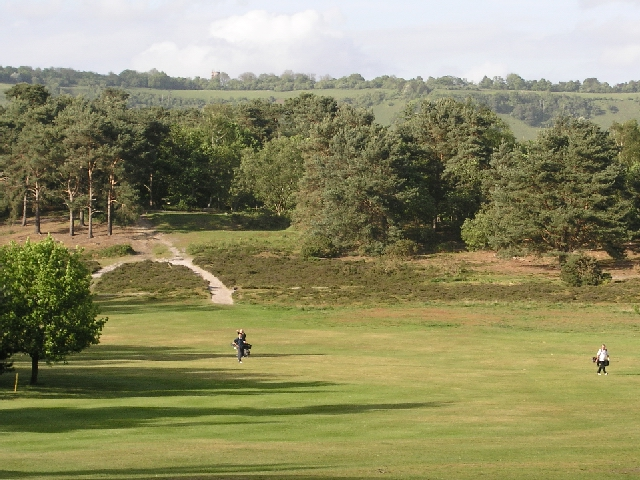 image of reigate heath